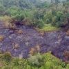 Waspadai akal bulus perusahaan pembakar hutan