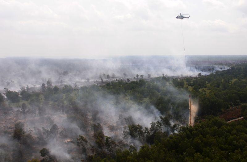 Helikopter Super Puma milik Asia Pulp & Paper (APP) Sinar Mas melakukan water bombing di Muara Medak, Bayung Lencir, Musi Banyuasin, Sumsel, Rabu (21/8). /Antara Foto.